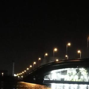 【釣り】南港へち釣行 (2020/02/23 南港ヘチ釣り キビレチヌ(38cm)ガシラ 釣果有り)