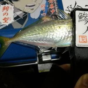 【釣り】南港釣行 (2020/12/09 南港アジング 好釣果!アジング釣果 中アジ~(27㎝~) 釣果有り)