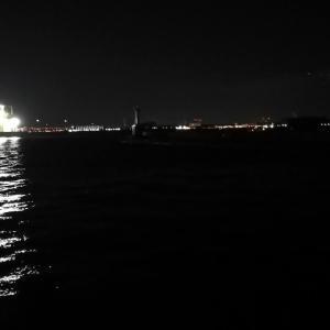 【釣り】南港釣行 (2020/12/23 南港アジング 短時間アジング釣果 中アジ~(25.5㎝~)サバ  釣果有り)
