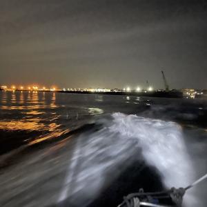 嗚呼 哀愁の冬の海 お寒い釣果3連発