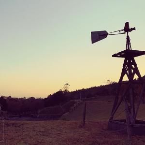 今年最後の矢岳高原ベルトンオートキャンプ場(宮崎県えびの市)【1/2】