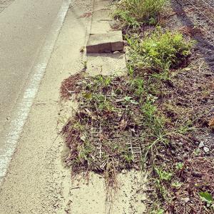公道脇の側溝が詰まって生活排水が道にあふれてるから市に問い合わせる