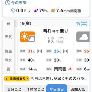 今日は、暑い一日になりそうてす。体調にご注意くださいね_(^^;)ゞ。