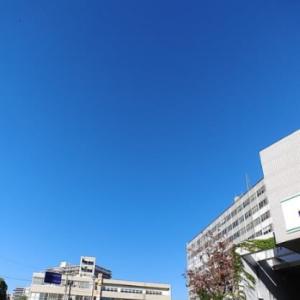 今日は、快晴の雲一つ無い青空です( ゚∀゚)。