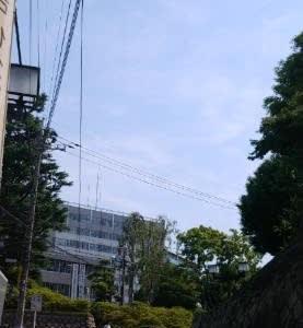 沖縄からフルーツが届き、そして外気の温度は真夏日を示し...(^o^;)