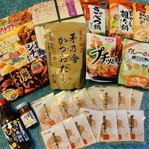 【日本のお土産】こんなものを持ち帰りました!