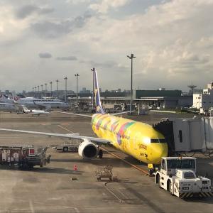 【旅】ただいま沖縄!!感謝を込めて。 〜喜びと経験は繋がっていく〜
