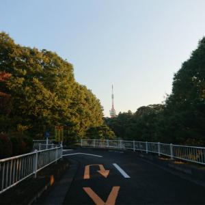 宇都宮市八幡山公園のゴーカートと台風19号の爪痕