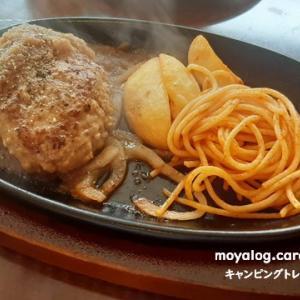 昼食は肉!→でもハンバーグが限界です