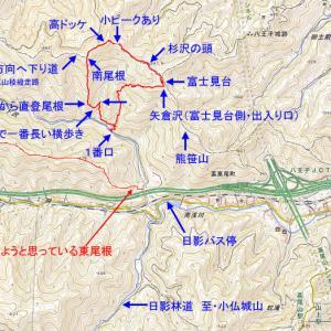 小下沢一番口から2019年19号雨台風で大荒れした後の矢倉沢を経て富士見台へ