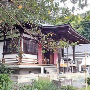 白山神社(廿里)と散策😎