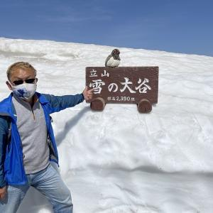 立山黒部アルペンルート雪の大谷ウォークに行ってきました…Twitter版😎