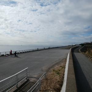 安全に海釣りができる浦安の高洲海浜公園