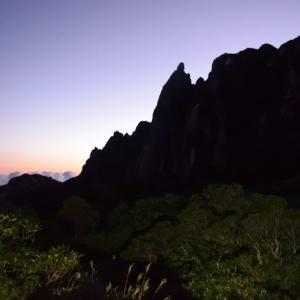 【旅203日目】屋久島縦走2日目 ~絶景の屋久島最深部と屋久杉~