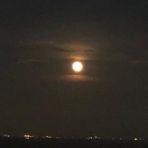 満月からの激動と宇宙人