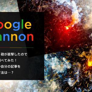 【アクセス爆増!】Google砲が直撃したので詳しく調べてみた!狙い方や自分の記事を調べる方法は…?