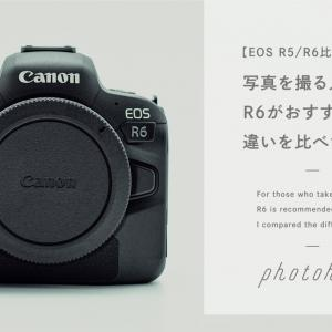 【EOS R5/R6比較】写真を撮る人にはR6がおすすめ!違いを比べてみた。