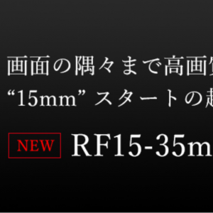 RF15-35mm F2.8 L IS USM or RF24-70mm F2.8 L IS USMの購入で悩む...の巻