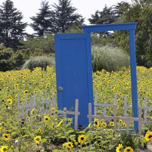 RF100mm F2.8 L MACRO IS USMで夏の昭和記念公園を撮る!の巻