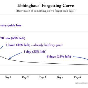 【英語学習】短期記憶と長期記憶【忘却曲線】