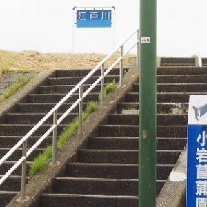 にしさんの花日記 花菖蒲 小岩菖蒲園