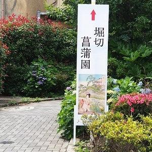 にしさんの花日記 花菖蒲 東京 堀切菖蒲園