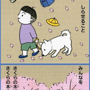 4/9【おしごと】さくらの木