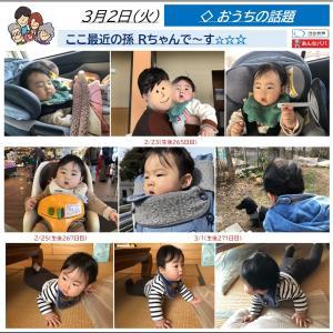 3/2【初孫】元気いっぱいの一週間