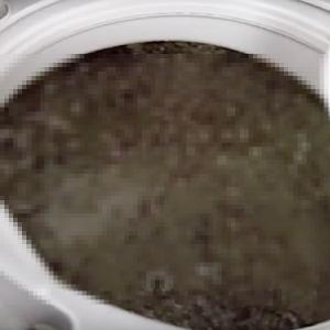 【閲覧注意】10年使用した洗濯機を漂白剤で掃除した結果・・・