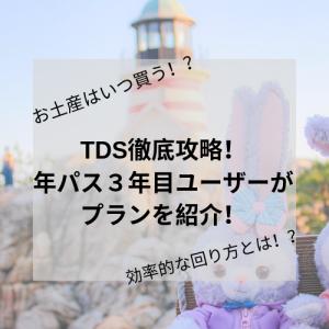 【回り方】TDS徹底攻略!年パス3年目ユーザーがプランを紹介!