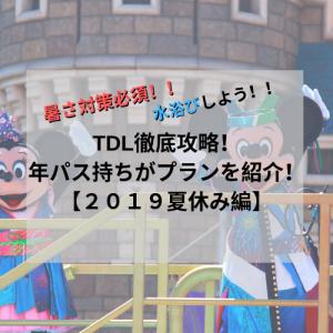 【回り方】TDL徹底攻略!年パス持ちがプランを紹介!【2019夏休み編】