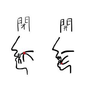 【健康】舌の正しい位置で痩せる✳︎歯並び、歌声、滑舌、猫舌