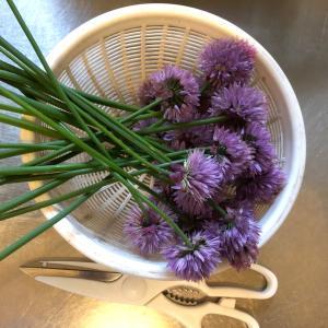 チャイブの花の料理
