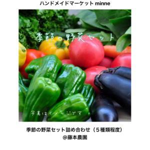 《季節の野菜セット》販売してます