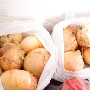 飴色玉ねぎで、玉ねぎ大量消費&冷凍保存!