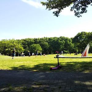 久しぶりにピクニック気分、名城公園でのんびり