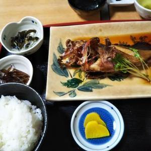 師崎でランチ、「活魚料理 ことぶ喜」さんで煮魚、白ミル貝を堪能