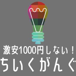 1000円以下で頭が良くなる衝撃の知育玩具TOP5! 体験談付き