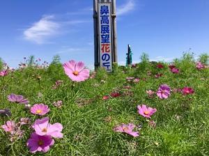 花の丘を歩いて お茶しました〜。