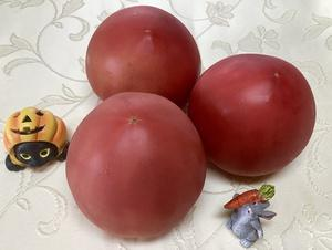 トマトが決め手‼︎
