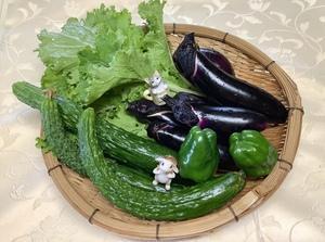 朝採れ野菜で〜〜