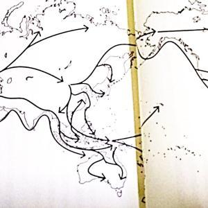 日本人のゲノム分析2 列島にはデ二ソワ×ネアンデルタール×フローレンス人×新人サピエンスのハイパーハイブリッド先祖がやって来た?