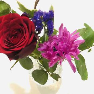 【体験口コミ】お花の定期便Bloomee LIFE(ブルーミーライフ)のお試しをレビュー!