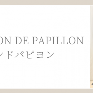 【口コミ】プチプラ通販セゾンドパピヨンの品質やサイズ感をレポート!コーデ写真あり