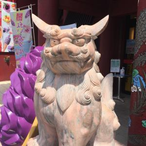 アイヌドラゴンと琉球ドラゴン