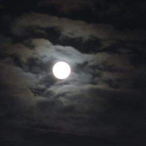 美しい満月の夜