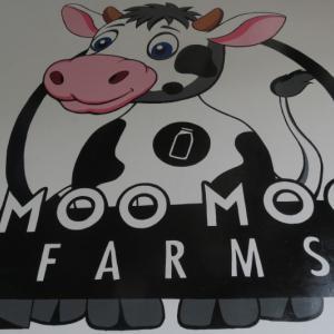 カンボジアで唯一の酪農業☆モーモーファーム@プノンペン