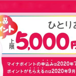 マイナポイントで5000円ゲットしました(゚∀゚)