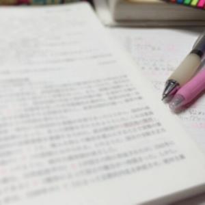小学4年生の時の主な勉強方法③