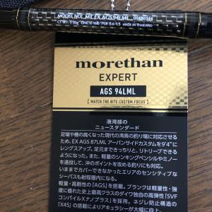 【モアザンエキスパートAGS94LML】購入記